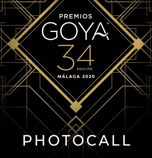 "Gala entrega premios ""Goya 2020"""